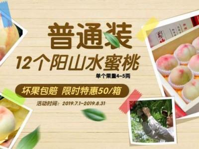阳山水蜜桃(普通装)