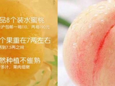 极品8个装水蜜桃